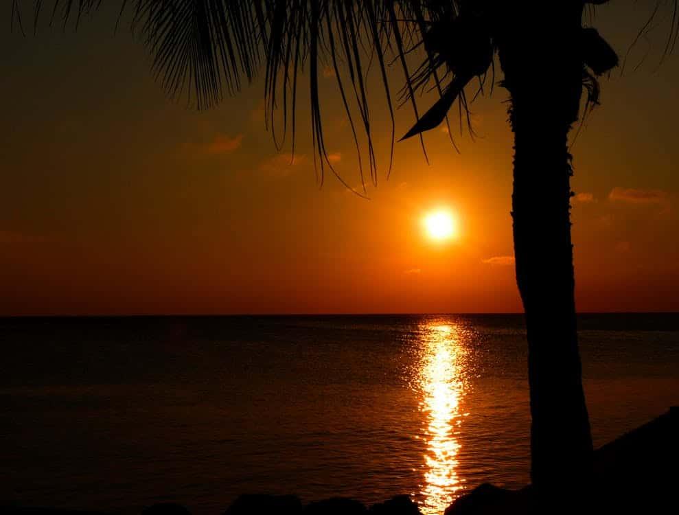Healthz.eu sunset